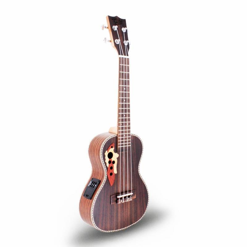 Qteguitar 23inch janpese style ukulele concert 24ME
